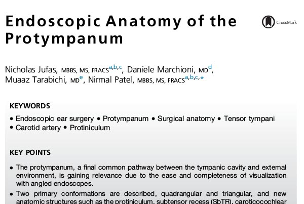 Endoscopic Anatomy of the Protympanum